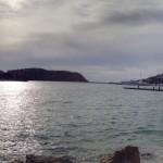 Das Hafenbecken von Porto d'Andratx