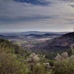 Blick auf Alaró