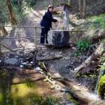 Brunnen zwischen Natz und Raas