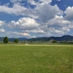 Schwarzwaldblick von Heitersheim